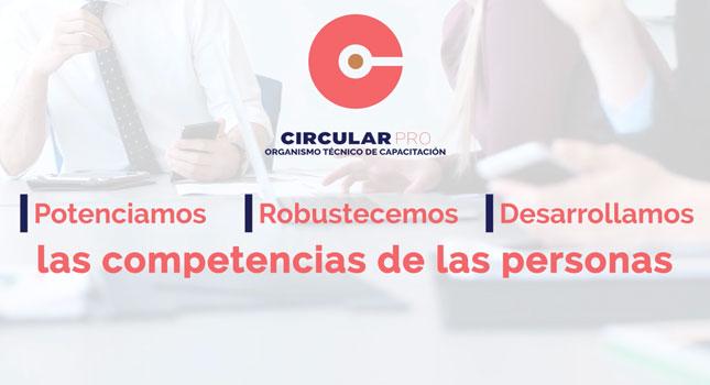 Video Corporativo Conceptual Circular Pro Empresa De Capacitación